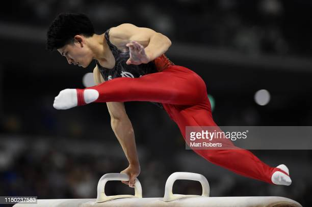 Kakeru Tanigawa of Japan competes on the Pommel Horse during day two of the Artistic Gymnastics NHK Trophy at Musashino Forest Sport Plaza on May 19,...
