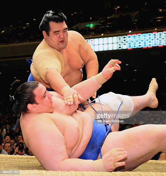 Kakuryu throws Ikioi on day eight of the Grand Sumo New Year Tournamnet at Ryogoku Kokugikan on January 19 2014 in Tokyo Japan