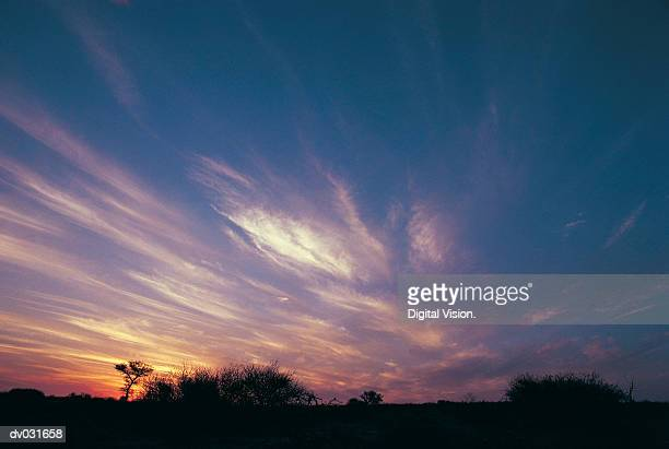 Kalahari sunset, Botswana