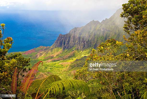 kalalau valley - na pali stock photos and pictures