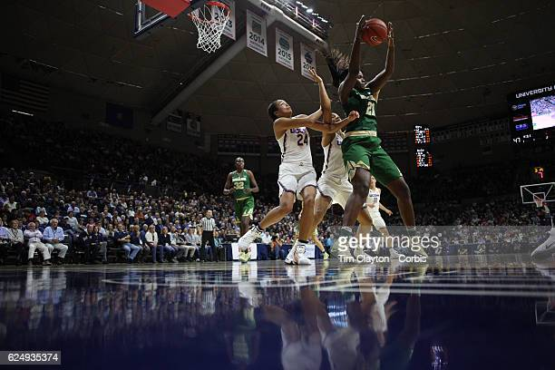 Kalani Brown of the Baylor Bears in action while defended by Napheesa Collier of the UConn Huskies and Gabby Williams of the UConn Huskies during the...