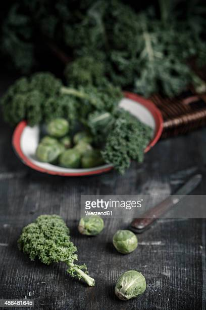 Kale and sprouts on wooden table and plate