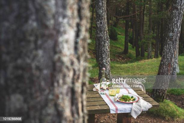 Kale and Zucchini Curry in the Forest, from the tree 1