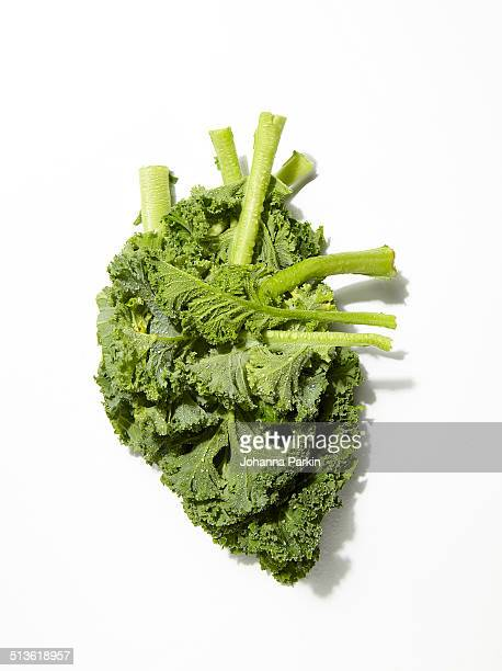 kale in shape of a human heart - kale stock pictures, royalty-free photos & images