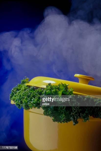 boerenkool in stoofpot - stamppot stockfoto's en -beelden