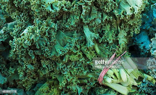 Kale is seen at a Farmer's Market where locally grown produce is sold August 13, 2015 in Fairfax, Virginia. AFP PHOTO/PAUL J. RICHARDS