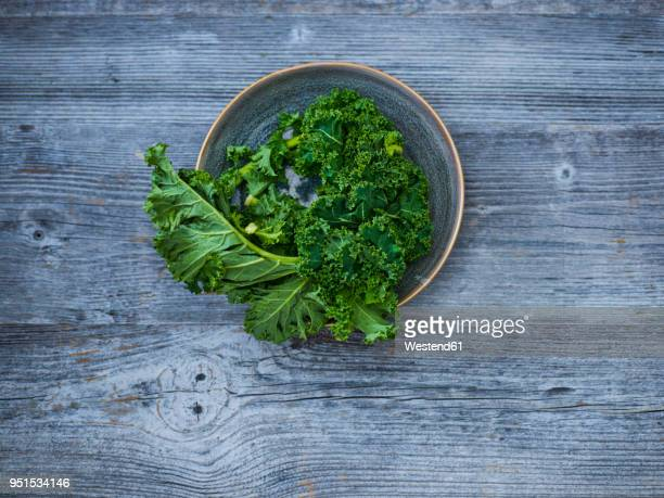 kale leaves in bowl - kale stock photos and pictures