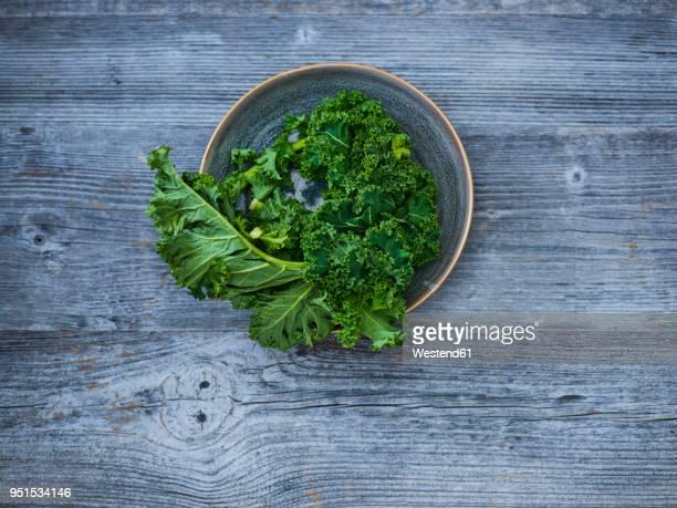 Kale leaves in bowl