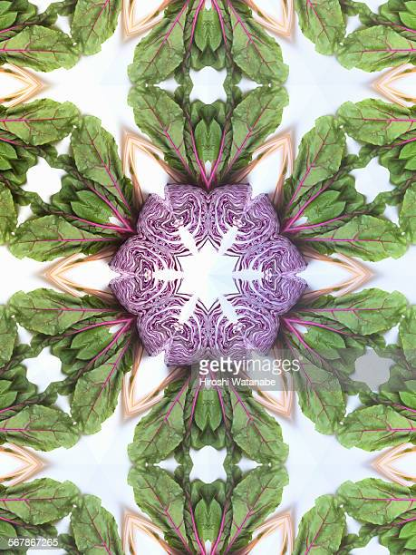 Kaleidoscope of Vegetables