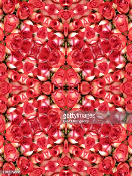 kaleidoscopic pattern of red roses - 2010 2019 stock pictures, royalty-free photos & images