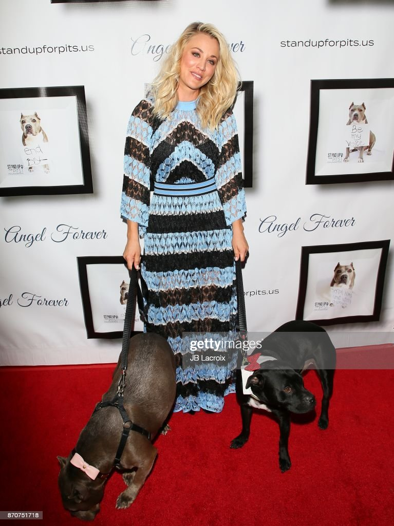 Kaley Cuoco attends the 7th Annual Stand Up For Pits on November 5, 2017 in Los Angeles, California.