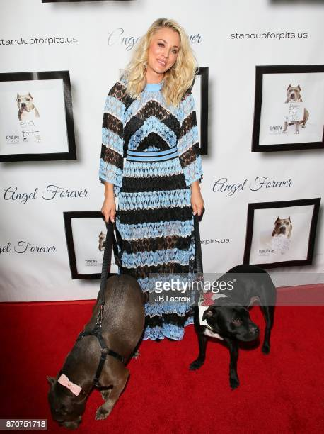 Kaley Cuoco attends the 7th Annual Stand Up For Pits on November 5 2017 in Los Angeles California