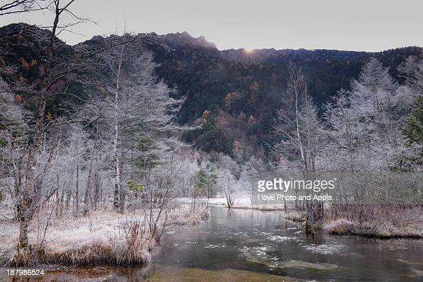 Kamikochi frost landscape