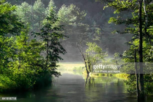 kamikochi scenery - 台地 ストックフォトと画像