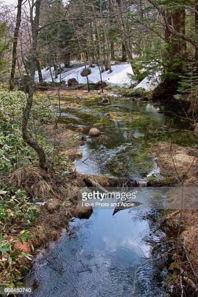 Kamikochi spring scenery