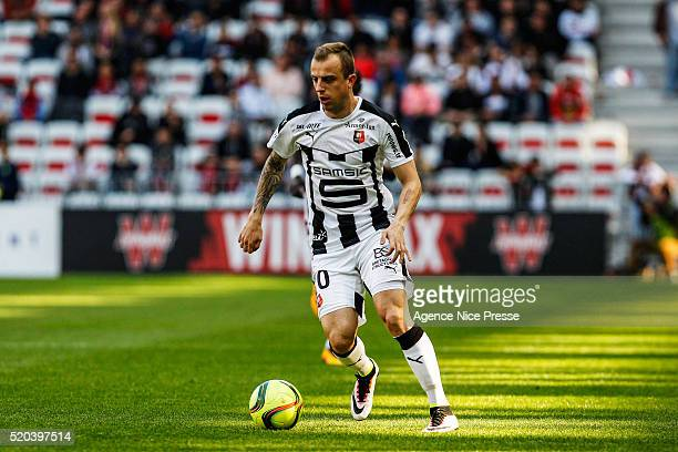 Kamil Grosicki of Stade Rennais FC during the French League 1 match between OGC Nice and Stade Rennes at Allianz Riviera on April 10 2016 in Nice...