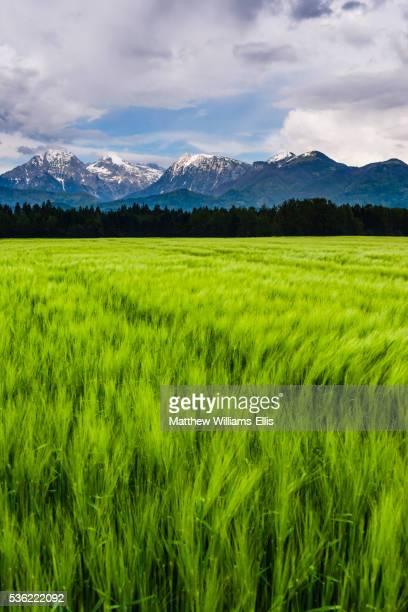 kamnik alps seen from near kranj, slovenia, europe - kranj stock pictures, royalty-free photos & images