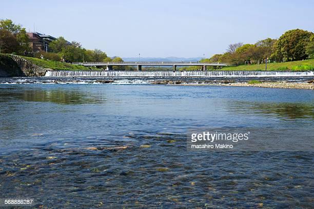 kamo river - fluss kamo stock-fotos und bilder