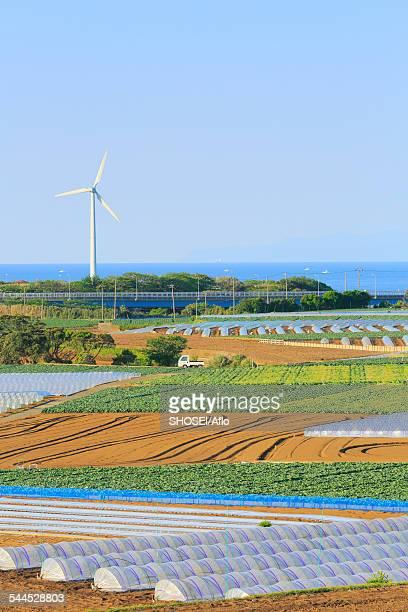 Kanagawa Prefecture, Japan