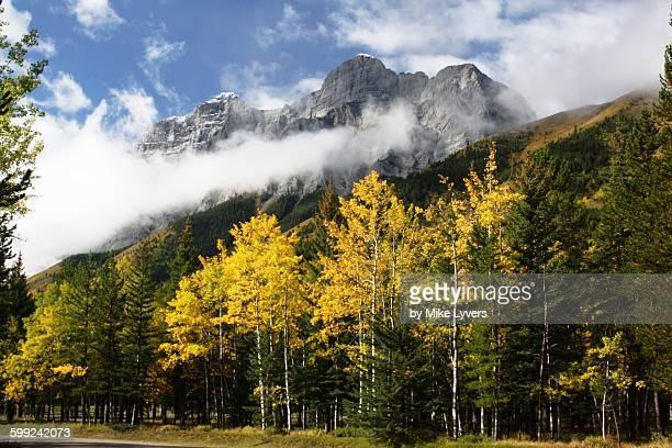 kananaskis autumn - kananaskis country stock pictures, royalty-free photos & images