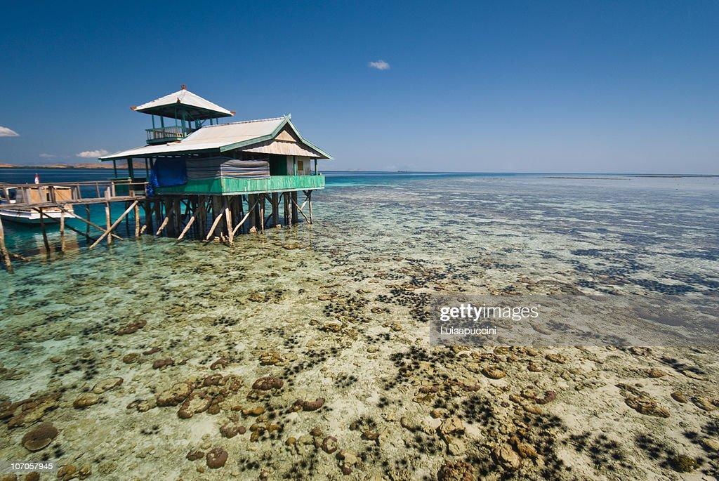 Kanawa island, Flores, Indonesia : Foto stock