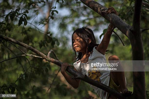 A Kanbeba indigenous girl plays in Tres Bocas village on the bank of the Rio Negro in the Amazonia Brazil on December 9 2015 AFP PHOTO / Christophe...