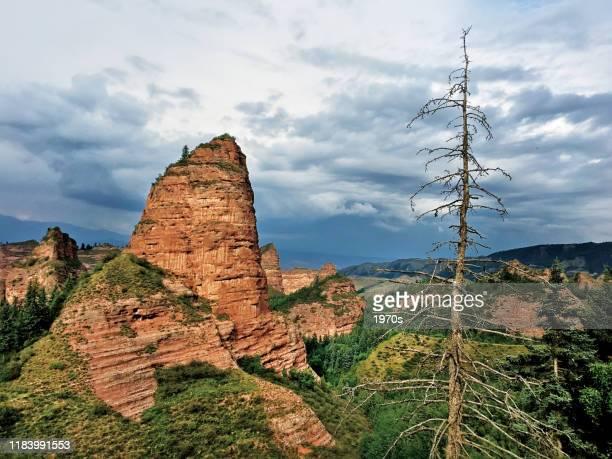「青海の小さなグリン」と題されたカンブラ国立森林公園は、中国青海省の黄南チベット族自治州建沙県で最も有名な風景です。 - ジオパーク ストックフォトと画像