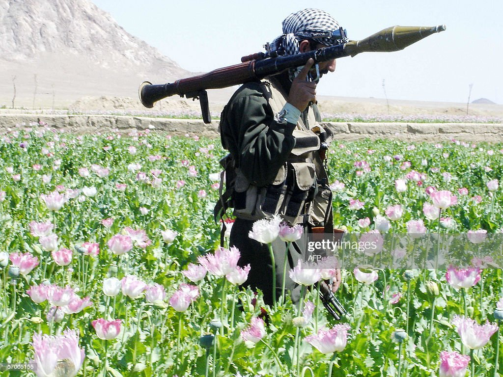 In this photograph dated 15 April 2005, an Afghan soldier with a rocket is pictured in a drive by officials to destroy poppies in a field in the Maiwand district, 45 kms west of the southern city of Kandahar. Taliban rebels determined to keep southern Afghanistan in chaos 13 March 2006 have teamed up with drug barons against the government and its opium eradication campaign launched last week, officials say. AFP PHOTO/ Emmanuel DUPARCQ