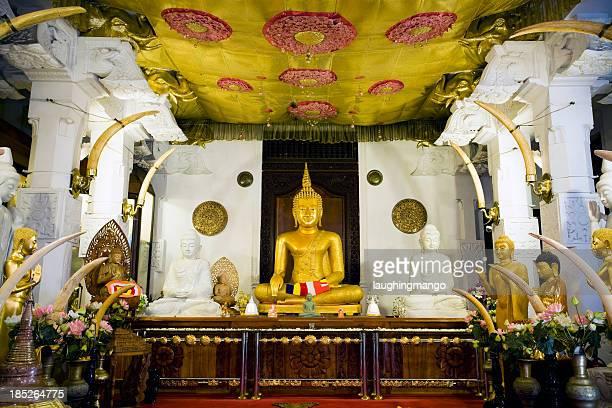 kandy sri lanka dalada maligawa - reliquie stock-fotos und bilder