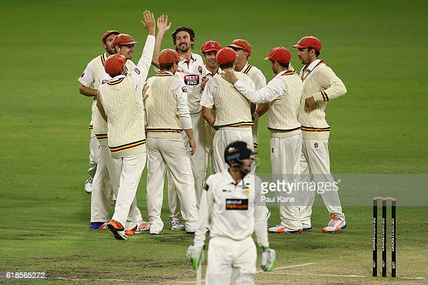 Kane Richardson of the Redbacks celebrates the wicket of Sam Whiteman of the Warriors during day three of the Sheffield Shield match between Western...
