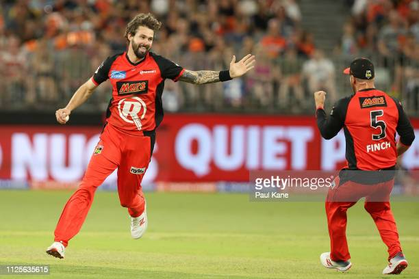 Kane Richardson of the Renegades celebrates the wicket of Ashton Turner of the Scorchers during the Big Bash League match between the Perth Scorchers...