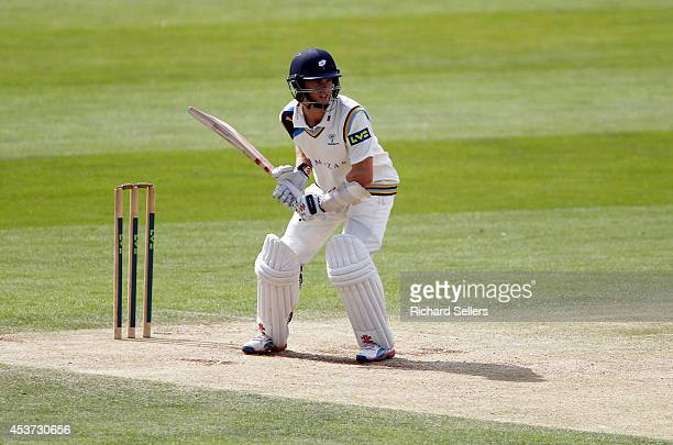 Kane Williamson of Yorkshire batting during day three of the LV County Championship division One match between Yorkshire and Sussex on August 17 2014...