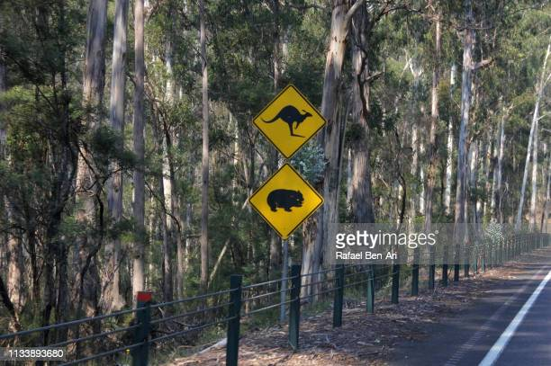 Kangaroo and wombat animals sign on a road