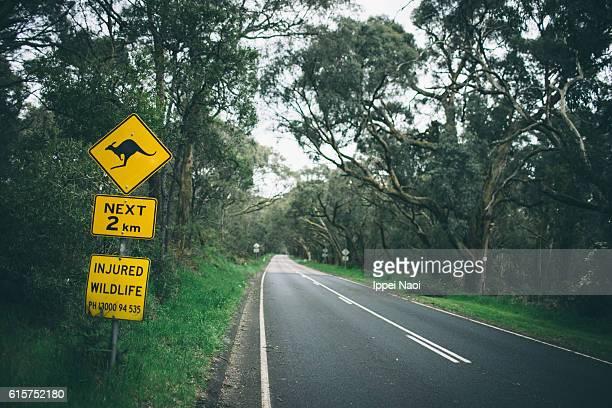 Kangaroo crossing road sign, Mornington Peninsula National Park