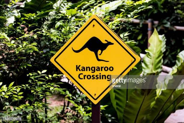 Kangaroo Crossing Sign