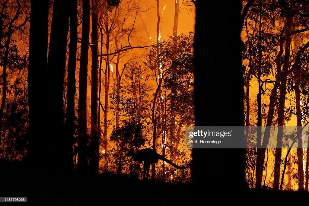 Emergency Warning Issued For Hawkesbury As Bushfire Nears Sydney Outskirts : News Photo