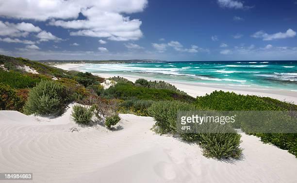 kangaroo island, australia (xxxl) - kangaroo island stock pictures, royalty-free photos & images