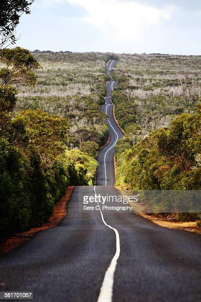 kangaroo island road - kangaroo island stock pictures, royalty-free photos & images