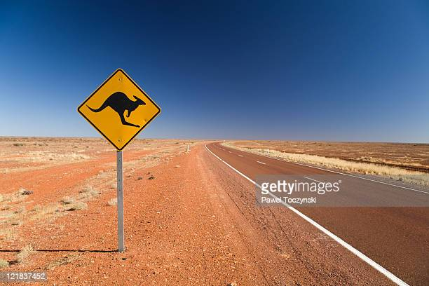 kangaroo road sign on the stuart highway in south australia, australia, 2008 - australien stock-fotos und bilder