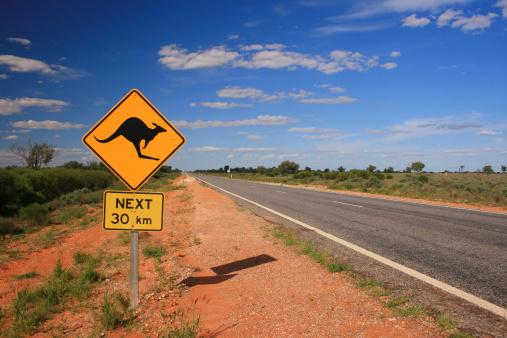 Kangaroo Road Sign 171316099