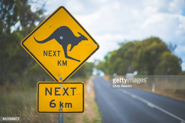 kangaroo road sign - animal crossing stock pictures, royalty-free photos & images
