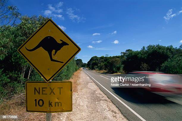 Kangaroo sign, Hog Bay road, Kangaroo Island, South Australia, Australia, Pacific