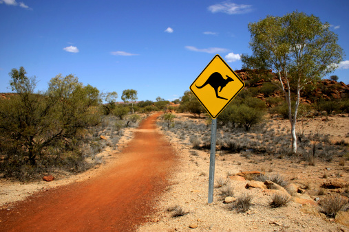 Kangaroo Sign in the Outback 182436960