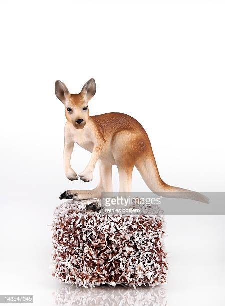 kangaroo toy on chocolate lamington