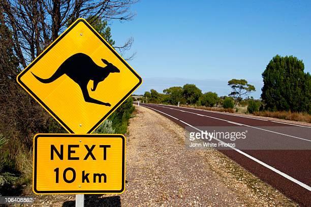 Kangaroo warning sign, Australia