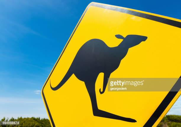 kangaroo warning sign in the australian outback - animal crossing sign stock pictures, royalty-free photos & images