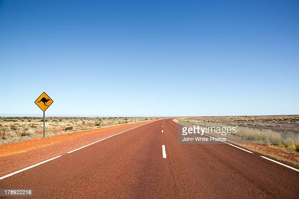 Kangaroo warning sign on highway. Australia