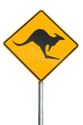 Kangaroo Warning Sign 173027346