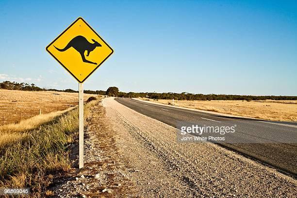 kangaroo warning sign - animal crossing stock pictures, royalty-free photos & images