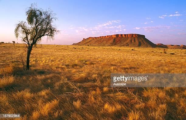 Kaningarra Aboriginal land Balgo / Wirrimanu southeast Kimberley region Western Australia